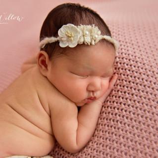 Newborn Portrait Session.