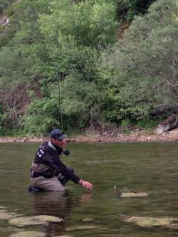 pêche à la mouche sur le verdon