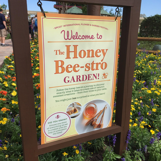 The Honey Bee-stro Garden at Epcot's Flower and Garden Festival