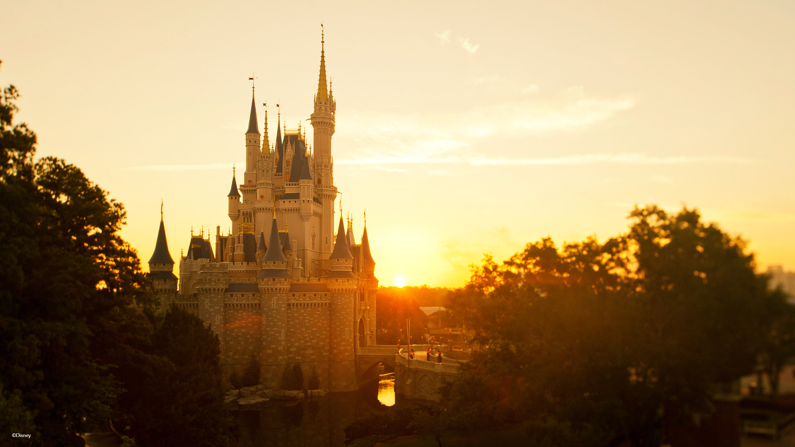 cinderella-castle-gallery16_-¬disney