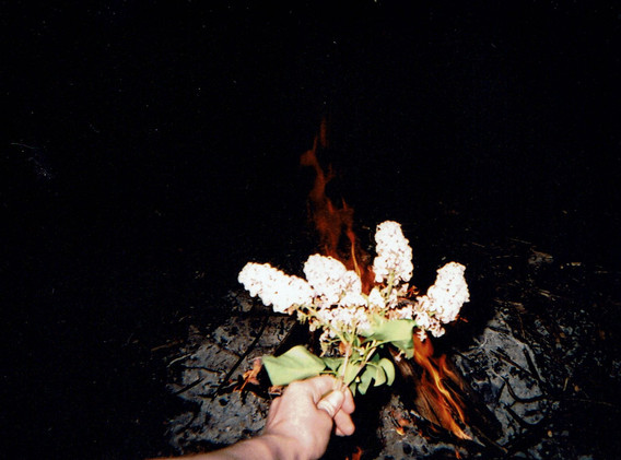 Disposable 35 mm
