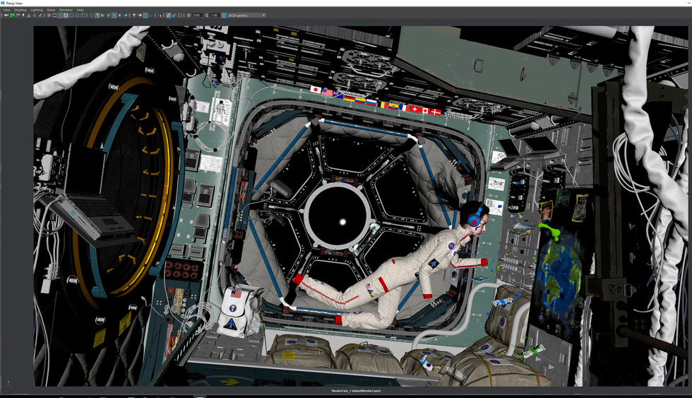 Color Viewport.jpg
