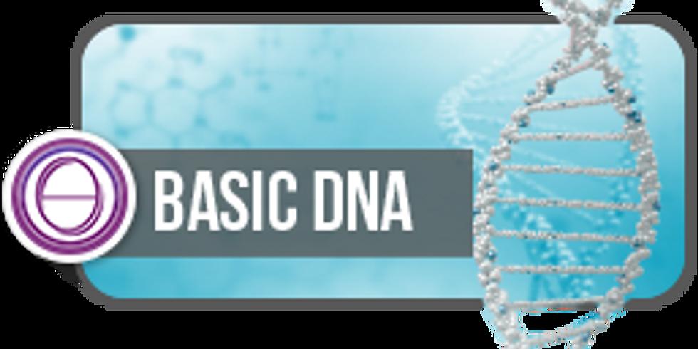 Curso DNA Básico  3 a 6 de agosto (Noite)