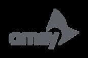 Amey_plc-Logo.wine.png