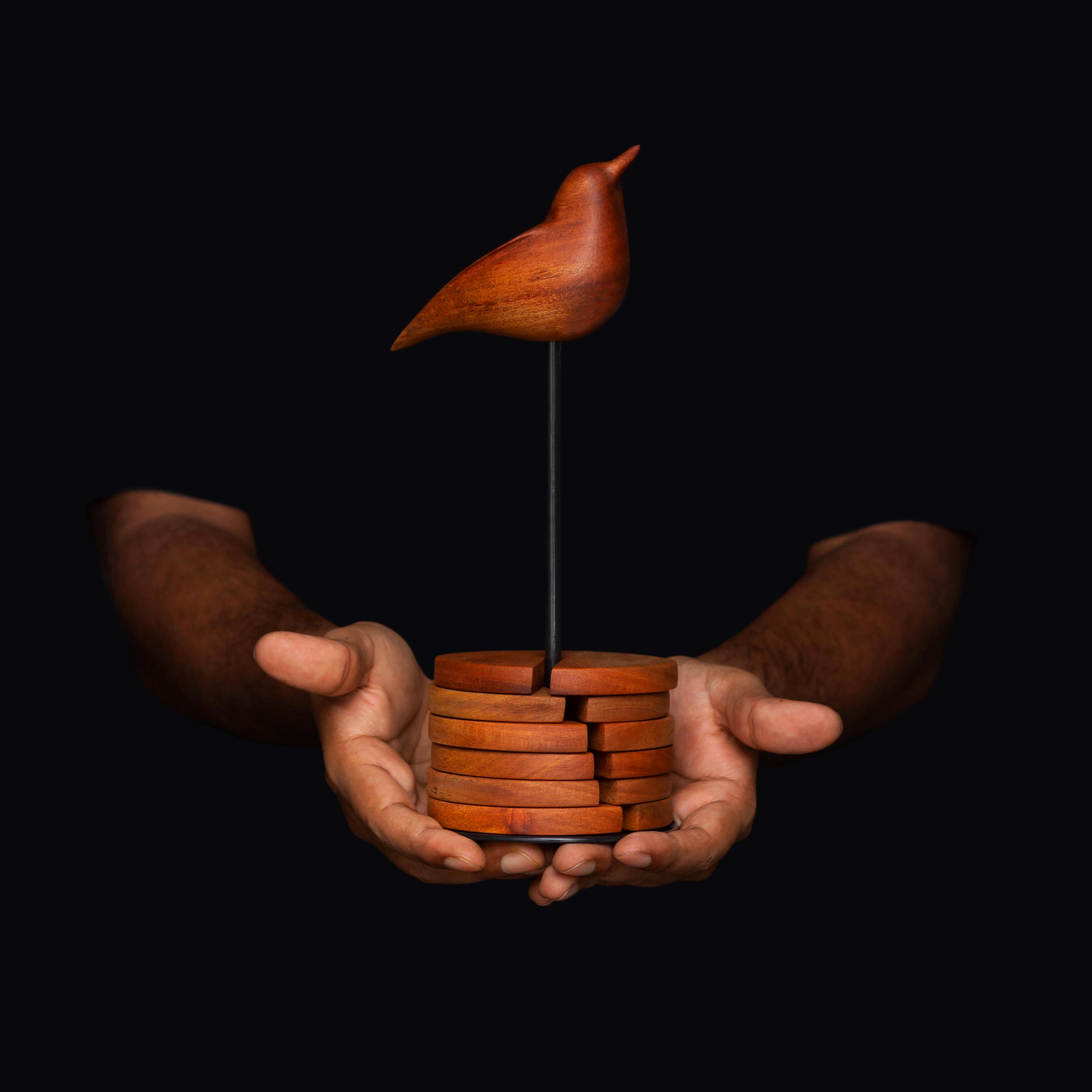 Bird coaster wood