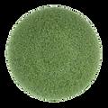 MotorScrubber Green Twister Pad