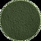 MotorScrubber Green Scrubbing Pad