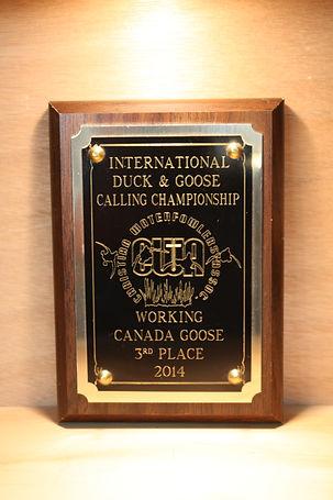 Willow Creek 2014 InternationalWaterfowler's WorkingCanada Goose - 1st. Place