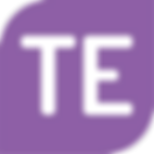 TE logo.png