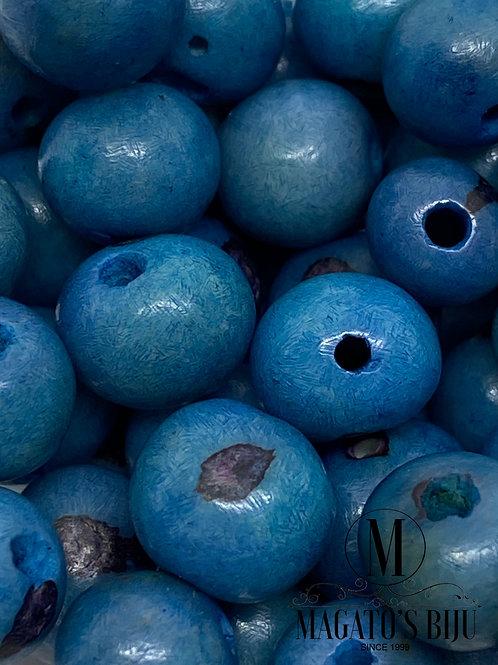 Sementes de Açaí Azul Claro