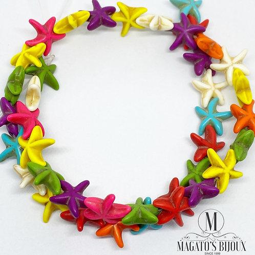 Estrela do Mar - Howlita Colorida