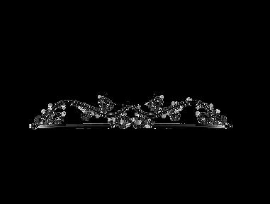Logo Camila.png