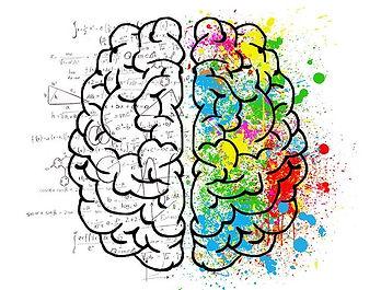 image des deux hémisphères du cerveau expliquant le travail en emdr