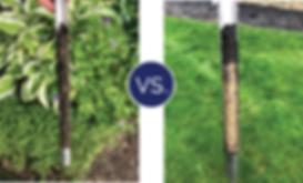 M.J. Soil Comparison