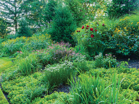 Award Received at Annual Landscape Awards Competition