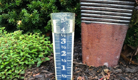 Rain Gauge is Full...Again.