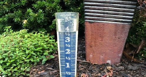 M.J. Design rain gauge full again