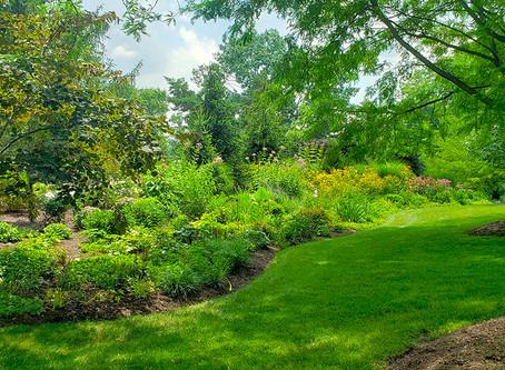 Summer Gardens... Start with a Plan!