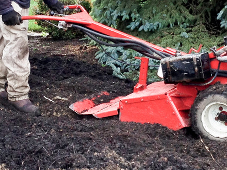 Preparing Healthy Soil Conditions