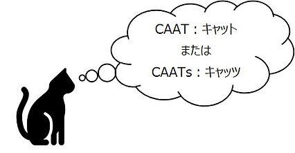 CAATsとは.jpg