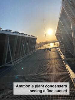 ammoniacondensers