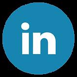 iconfinder_linkedin_circle_294706 copy.p