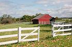 AG Insurance Farm Ranch Insurance Farm and Ranch Insurance Agriculture Insurance Barndominium Insurance Barn Insurance Horse Property Insurance Dairy Insurance Beef Cattle Insurance Commercial Liability Insurance Texas TX