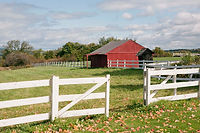 Country style red barn where our indoor pre cut trees are displayed