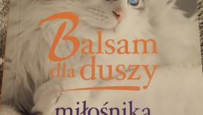 Balsam dla duszy miłośnika kotów