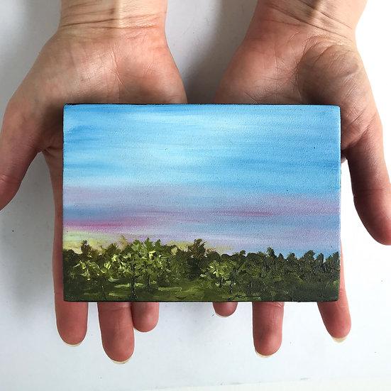 Orchard Sunset study