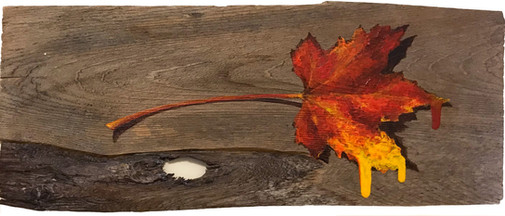 Autumn Flows