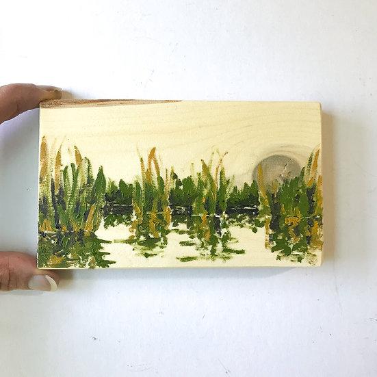 Marsh Reflection study