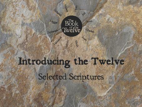 Introducing the Twelve
