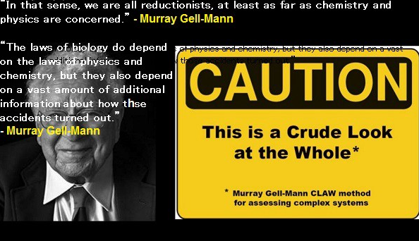 Murray Gell-Mann on Complexity