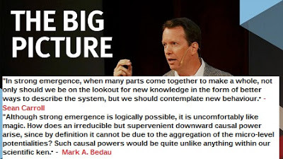 The Physicist Sean Carroll on (Scientific) Emergence