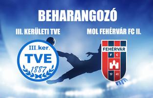 Beharangozó NBIII. III. KER. TVE - MOL FEHÉRVÁR FC II.