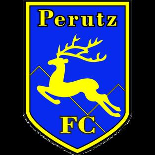Edzői értékelés III. KERÜLETI TVE - PÁPAI PERUTZ FC 3 – 2