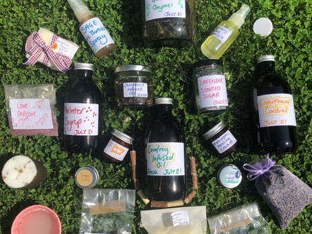 Junior Herbalist Club Coming to Leicester