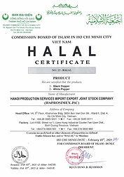 fake halal certificate.jpg