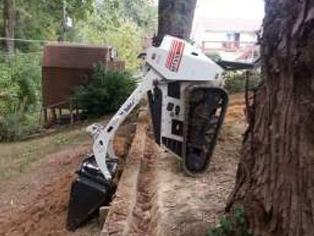 Bobcat Induced Faceplant!