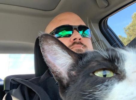 The Misadventures of Saf-T-Cat