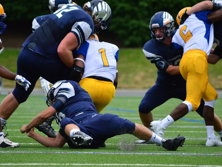 Game Preview-The Bloomfield Hills Cranbrook Cranes to face the Redford Union Panthers in 2018 Season