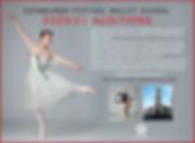 EFBS DT ad Peter Schaufuss 180x132mm.png
