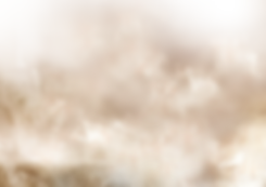 Fog hintergrund.png