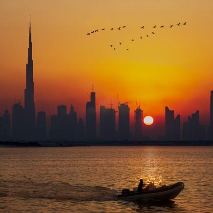Dubai Creek Harbour Birds Sunset.jpg