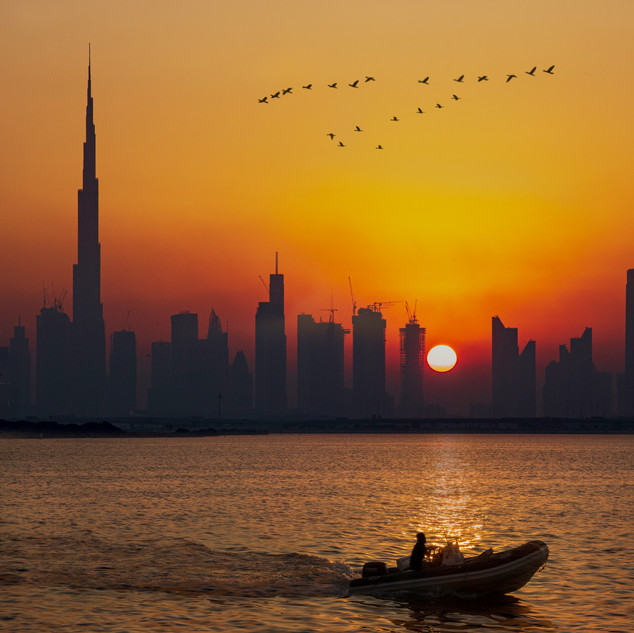 Dubai Creek Harbour Birds Sunset.jpg