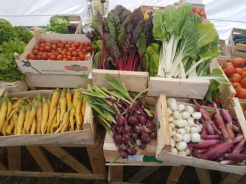 Légumes d'été 2.jpg