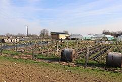 Présentation des Jardins du Puyrajoux