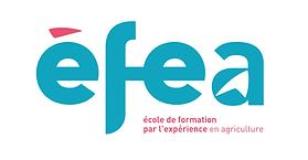 Logo_EFEA.png