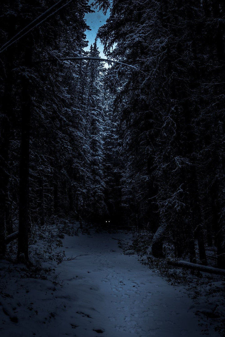 wp7912354-winter-scary-wallpapers.jpg